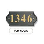 PLM-NCG/A